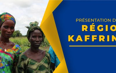 Kaffrine : des besoins en moutons de tabaski évalués à 90 000 têtes